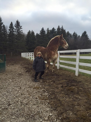 photo of Hana Gartner and Duke the horse